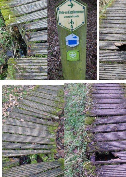 Natuurreservaat Wellemeersen in verval - welle planken