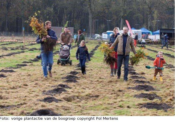 Bosgroepen provincie Antwerpen planten 15.600 nieuwe bomen - bosgroep