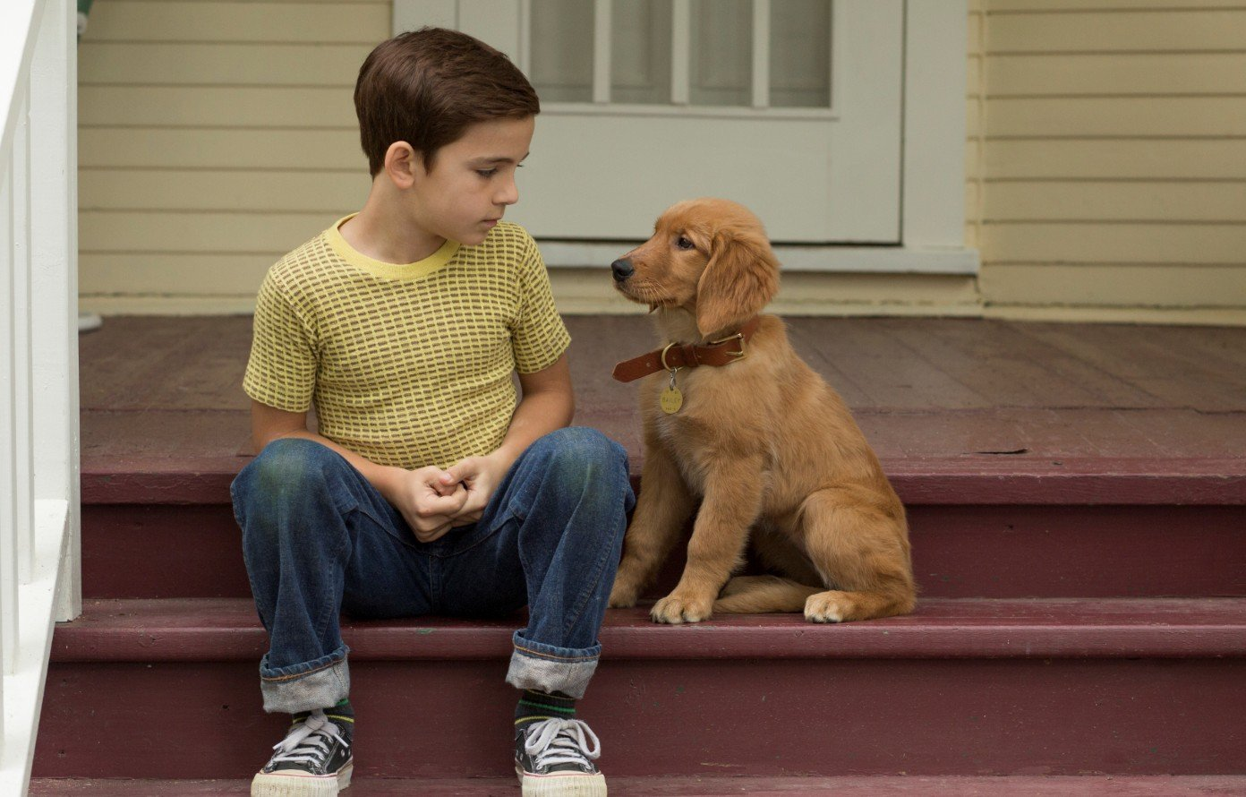 Filmtip - A Dogs Purpose - Beeld Entertainment One 1