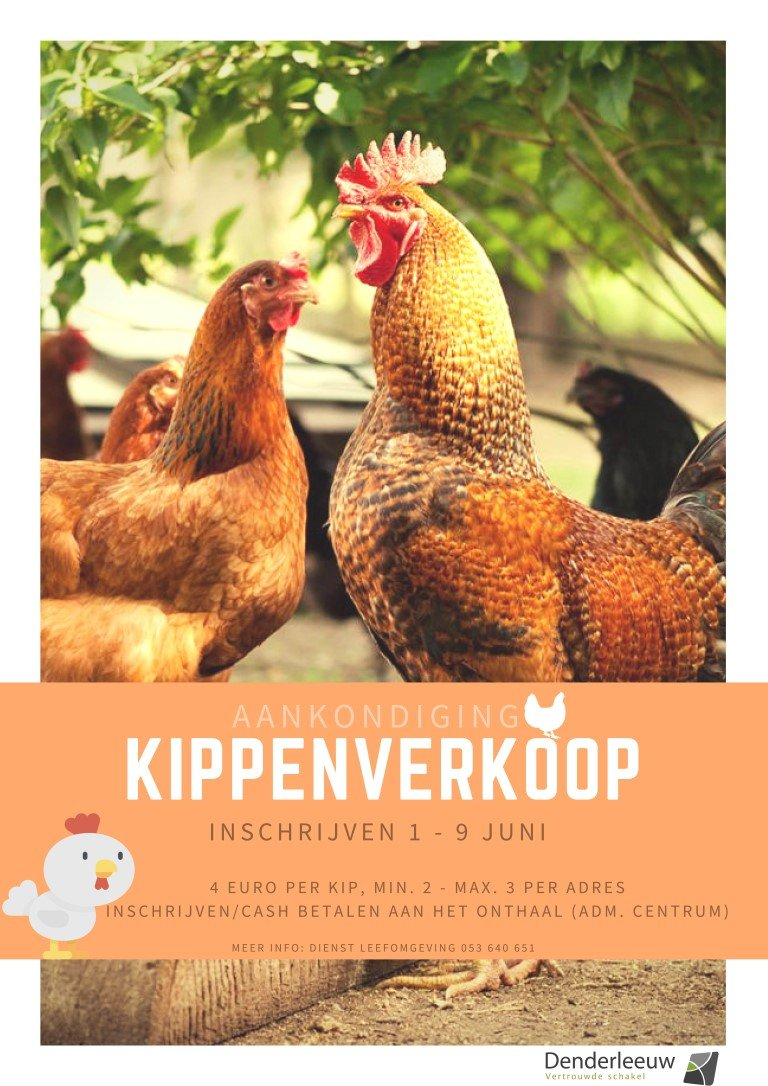 Gemeente Denderleeuw organiseert tweede kippenverkoop - Affiche20kippenverkoop20Medium