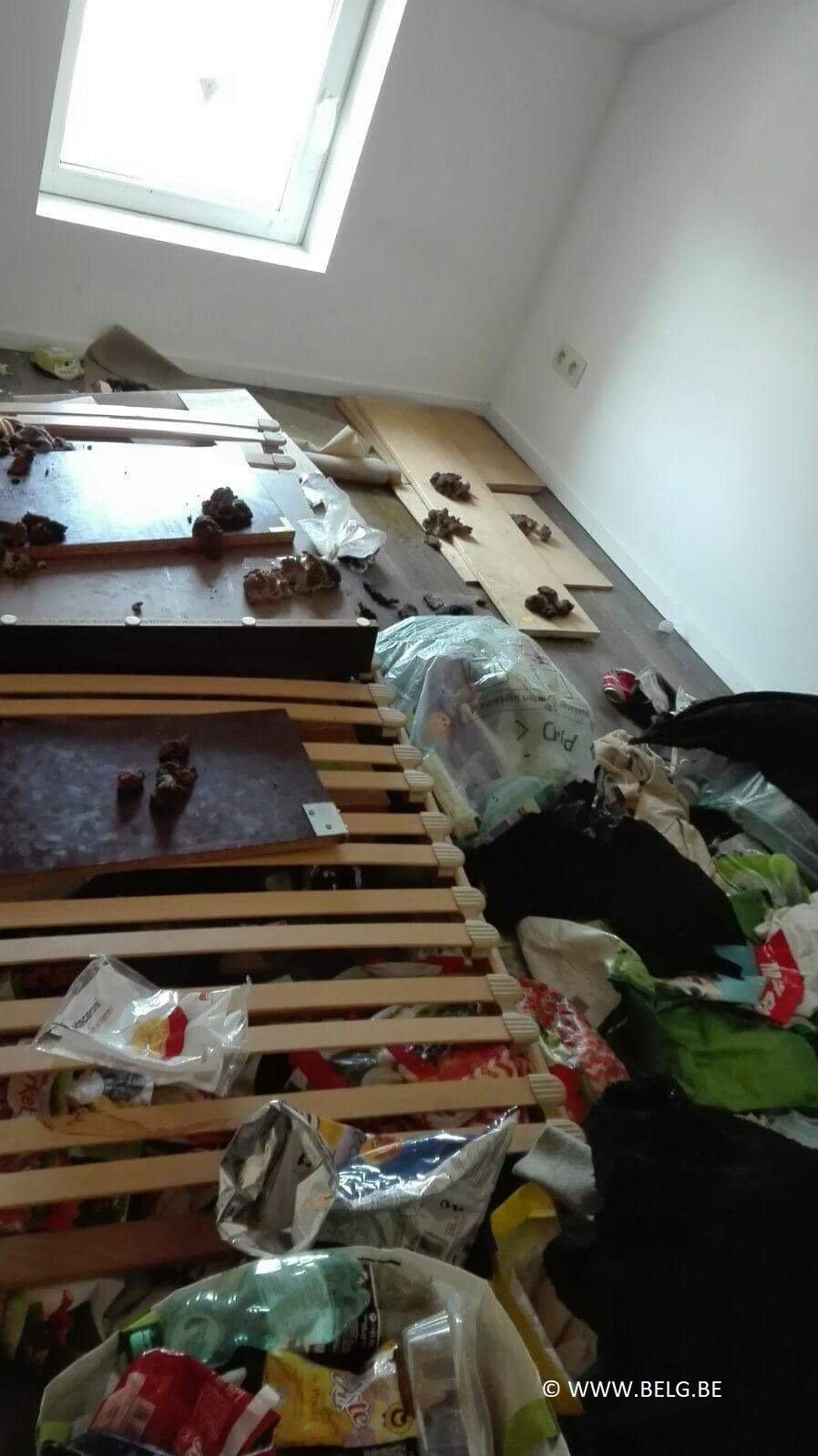 Huurhuis in Geraardsbergen na enkele maanden een ravage - IMG 1113