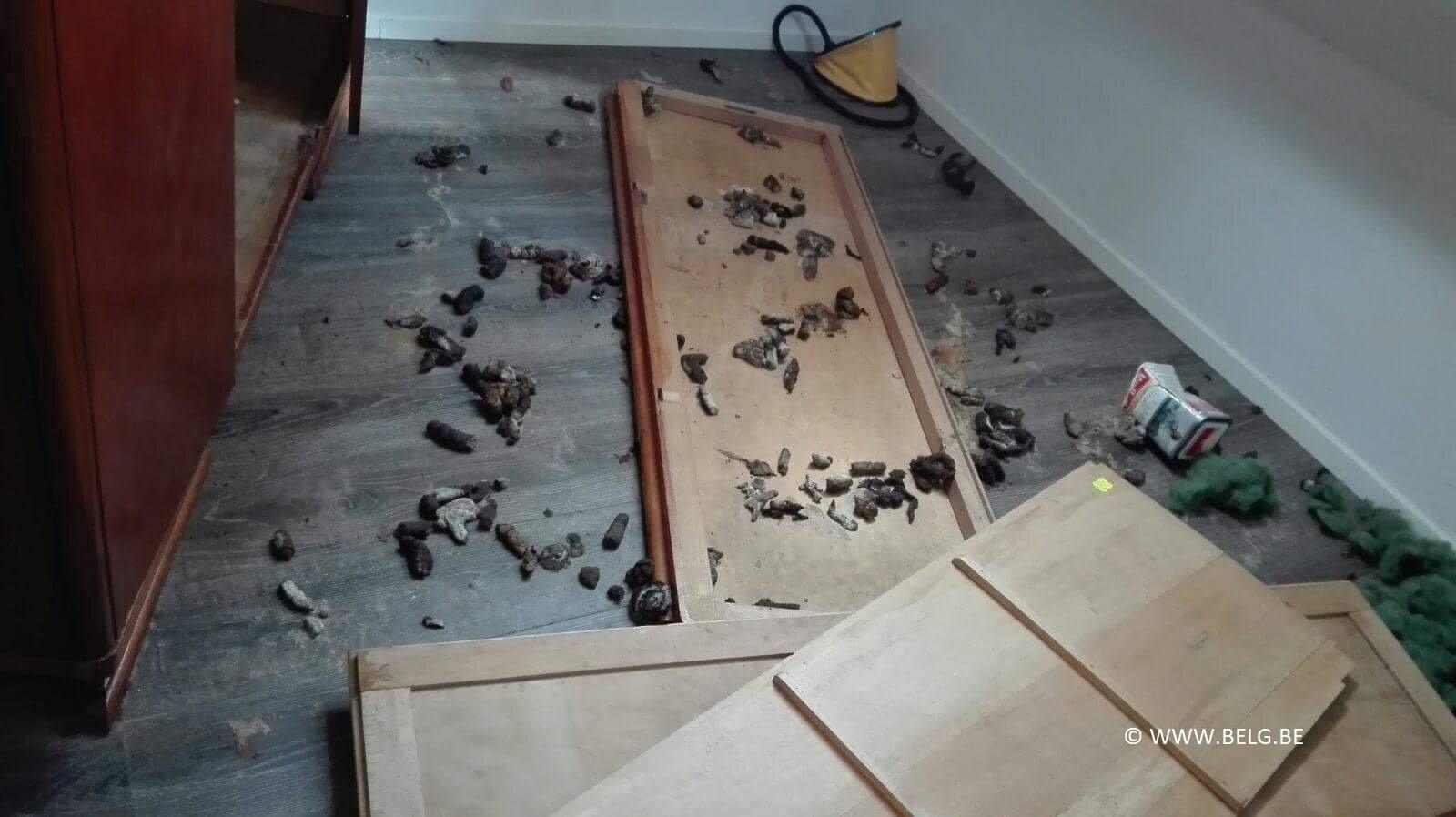 Huurhuis in Geraardsbergen na enkele maanden een ravage - IMG 1114