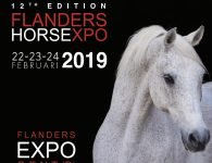 Flanders Horse Expo
