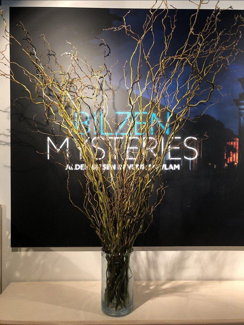 Bilzen Mysteries verstopt één gouden en 400 lichtgevende paaseieren - Bilzen Mysteries 8