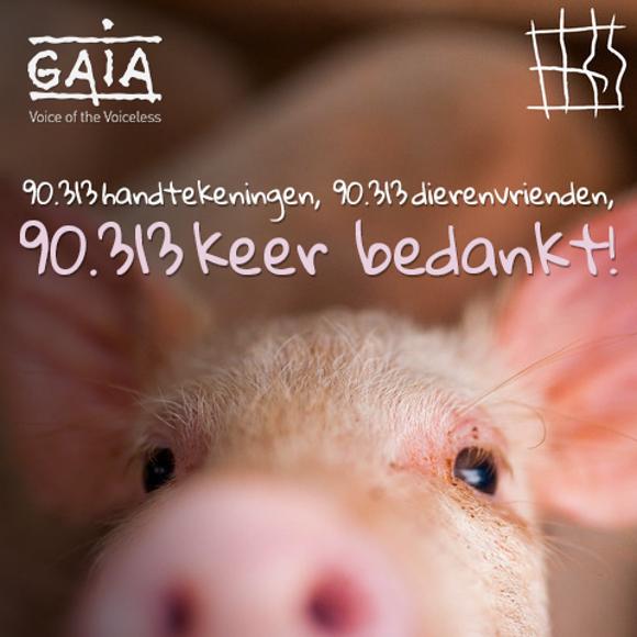 Actie 'Stop de kooien' sluit af met 1,5 miljoen handtekeningen - Gaia 1