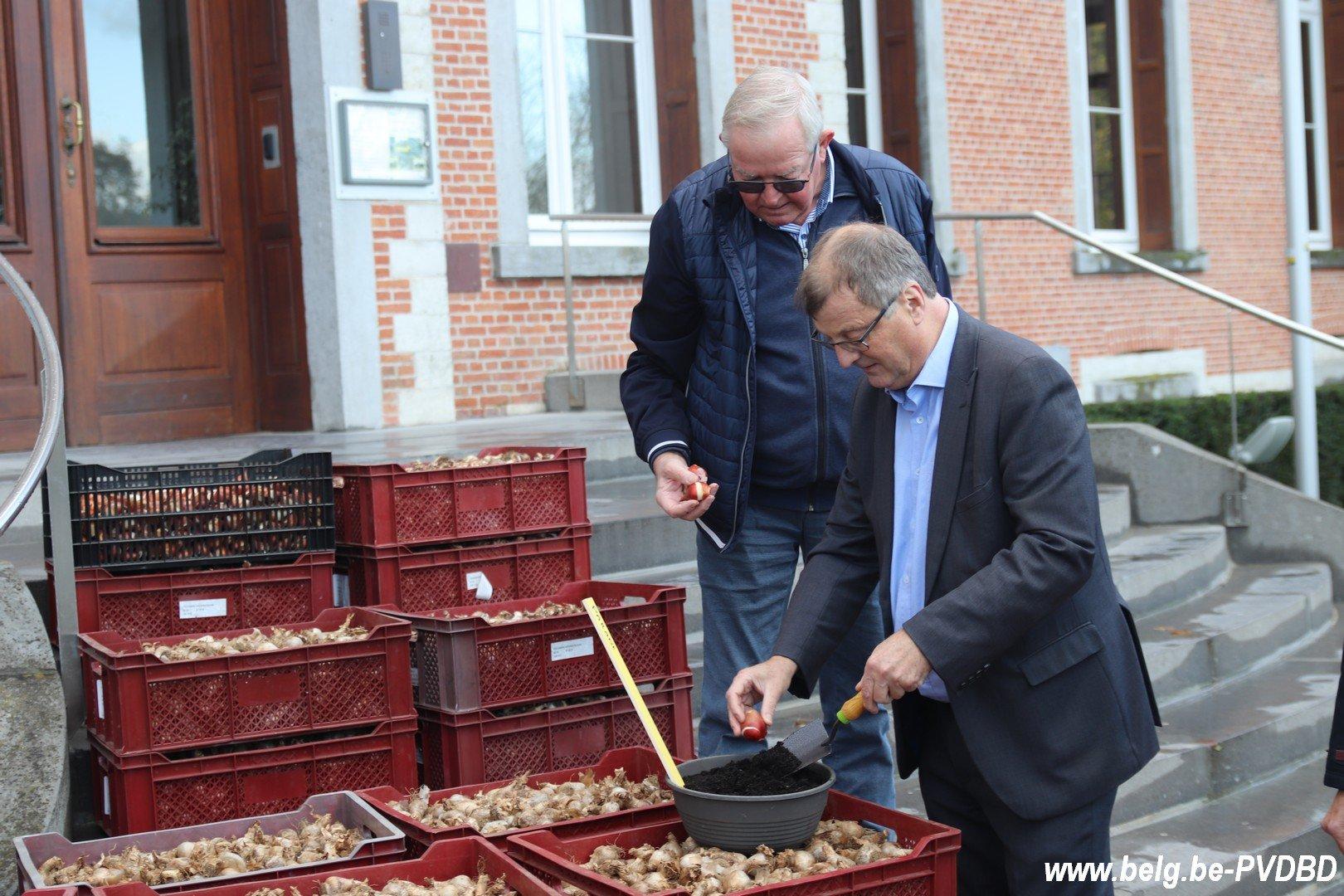 Dilbeek ontvangt 10.000 voorjaarsbollen van het kasteel van Groot-Bijgaarden - IMG 3655