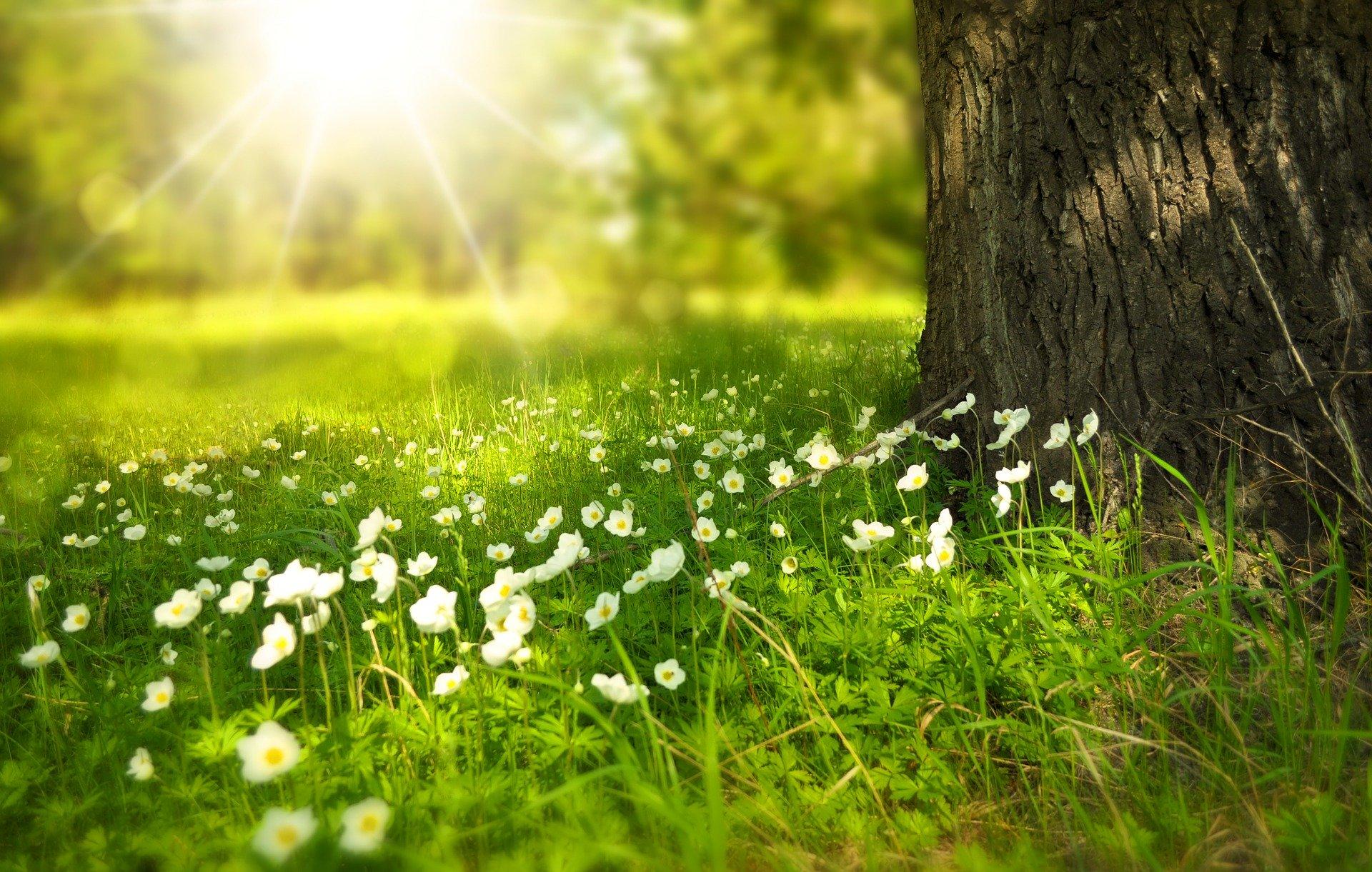 klaar voor de lente en de zomer