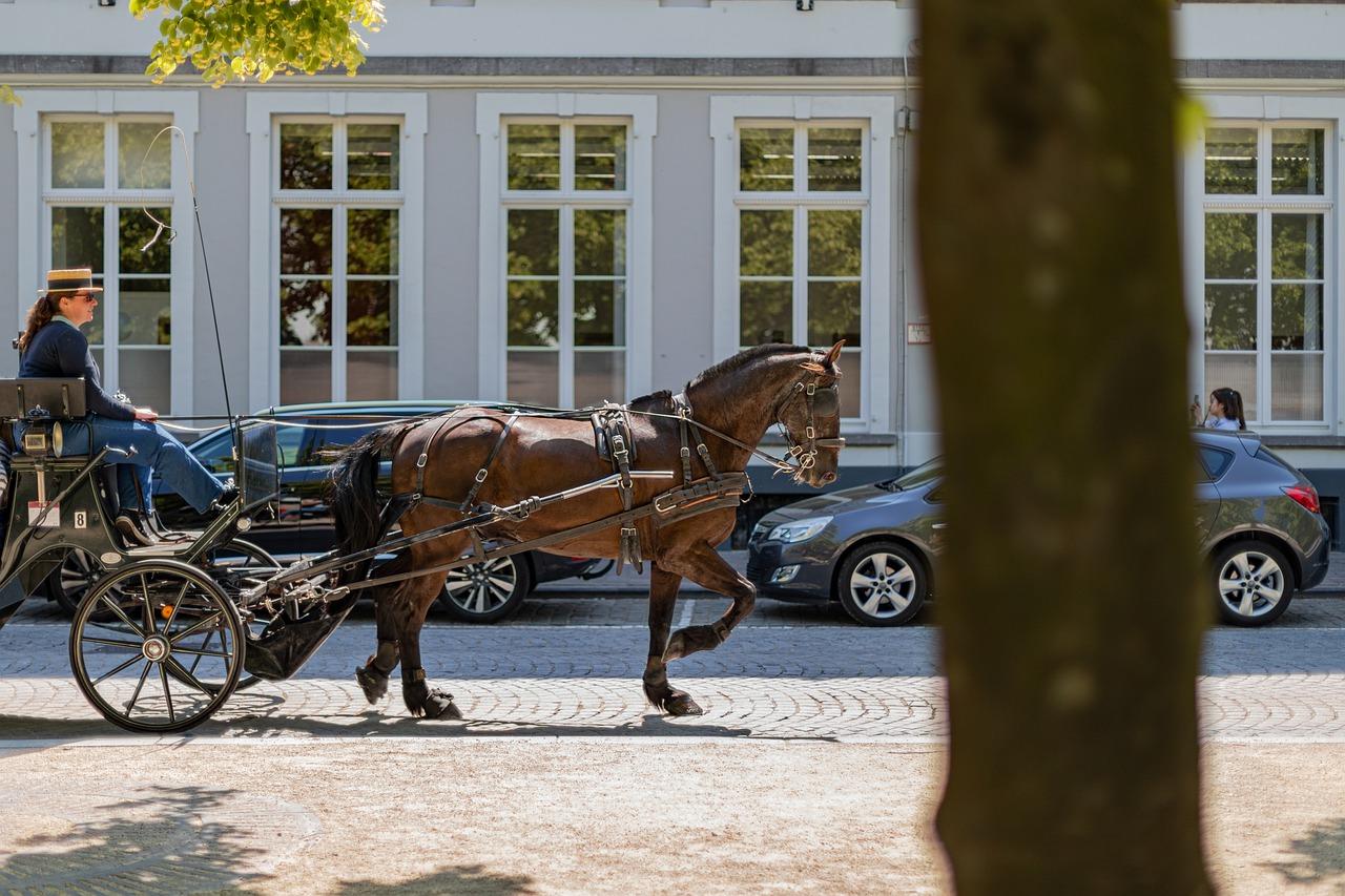 minder bezoekers in Vlaanderen door Corona