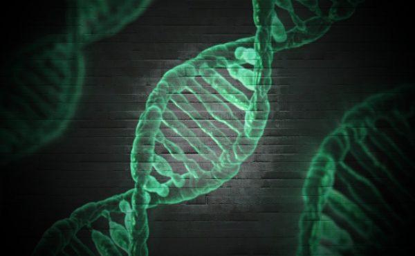 DNA onderzoek